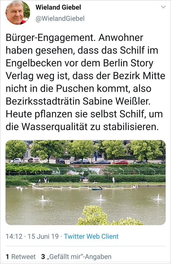 Engelbecken Aktion Schilf
